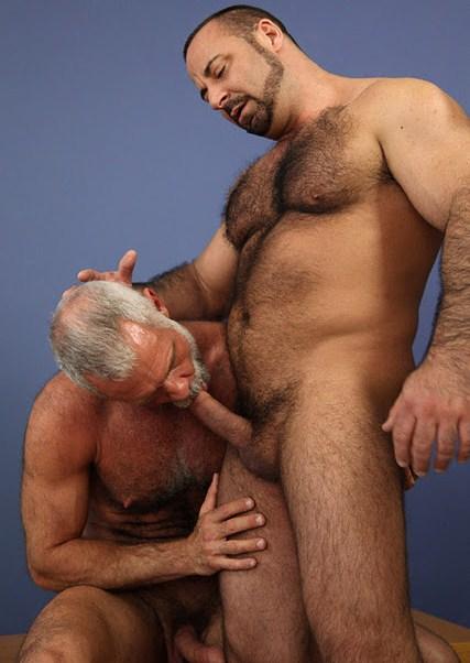 Hairy bears gay sex