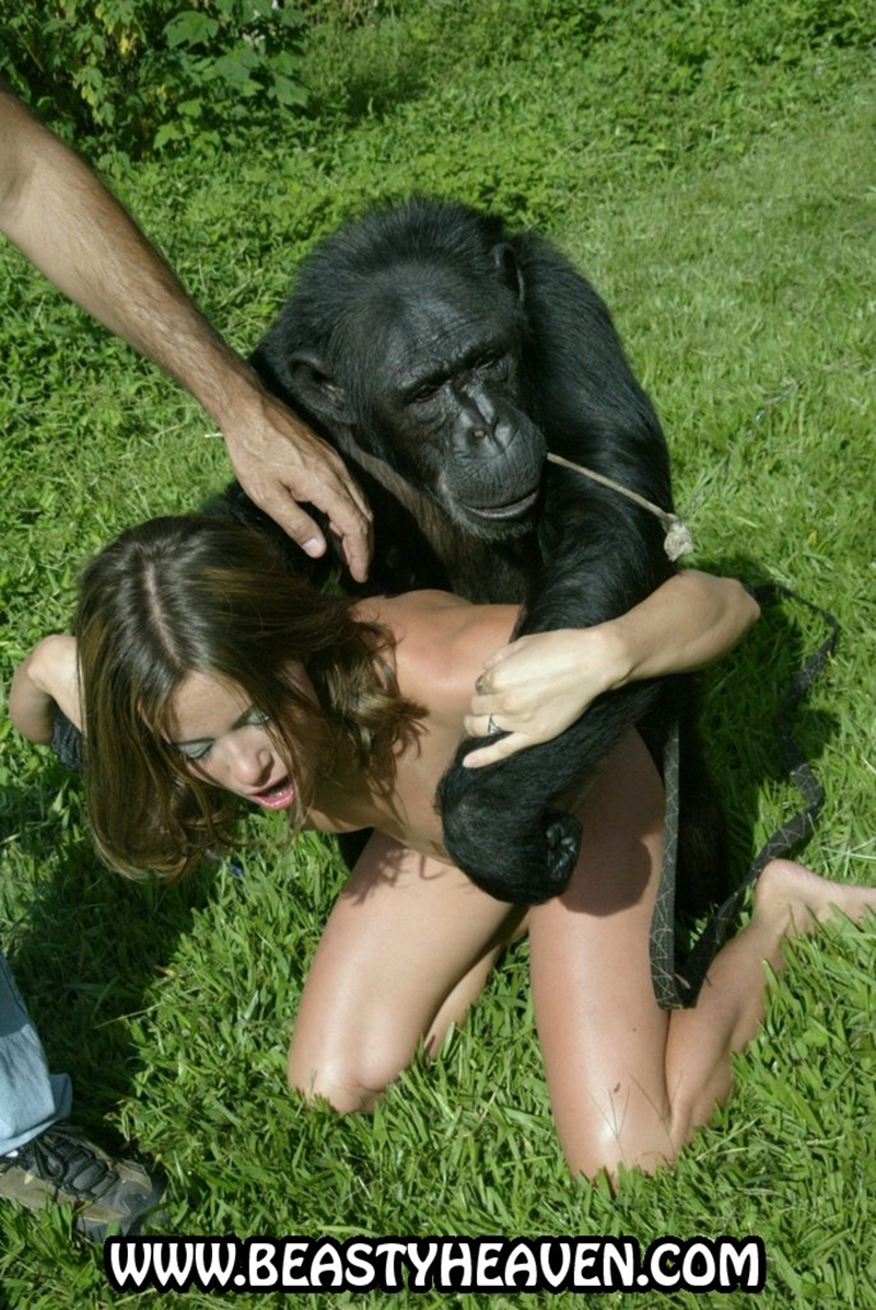 monkey and lady xxx