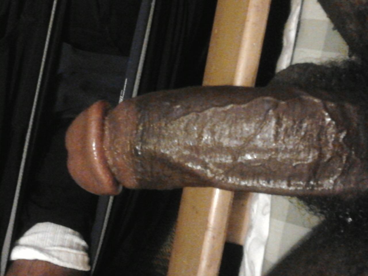 Xnxx busty indian