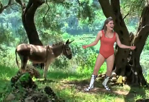 Women of norway porn