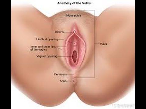Female vagina tips