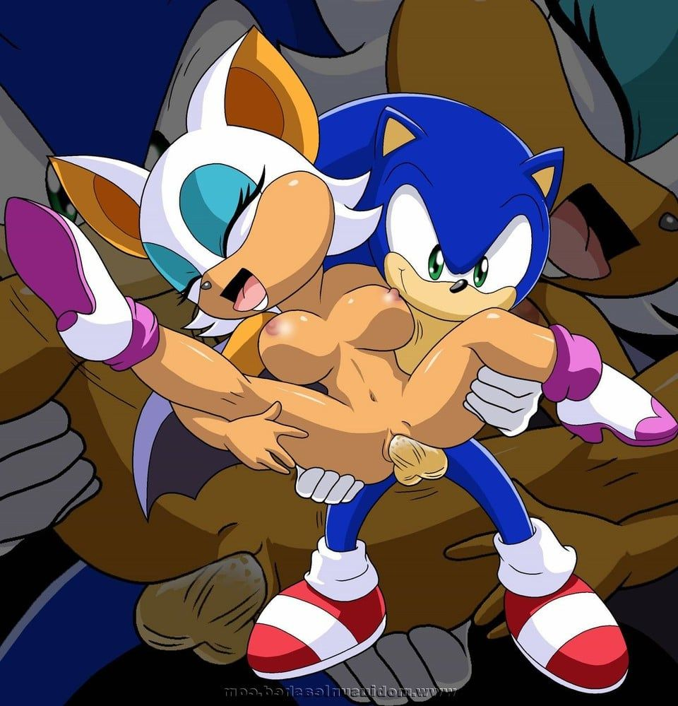 Sonic and rouge sex gorgeous! anyone else