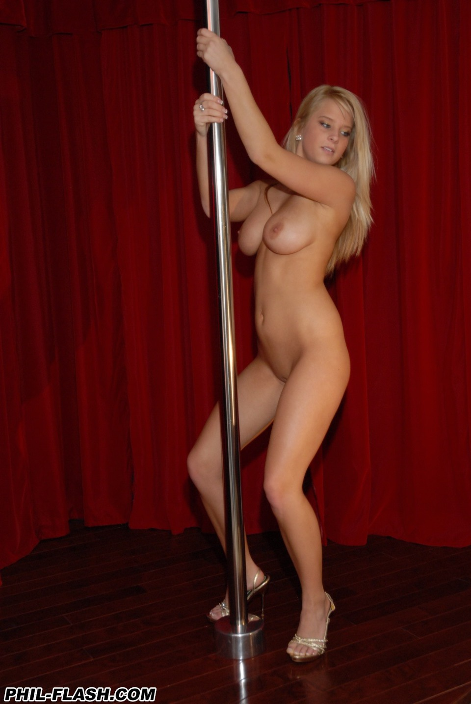 Apologise, Sexy nude pole dance opinion you