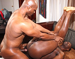 Free big booty ebony tranny videos
