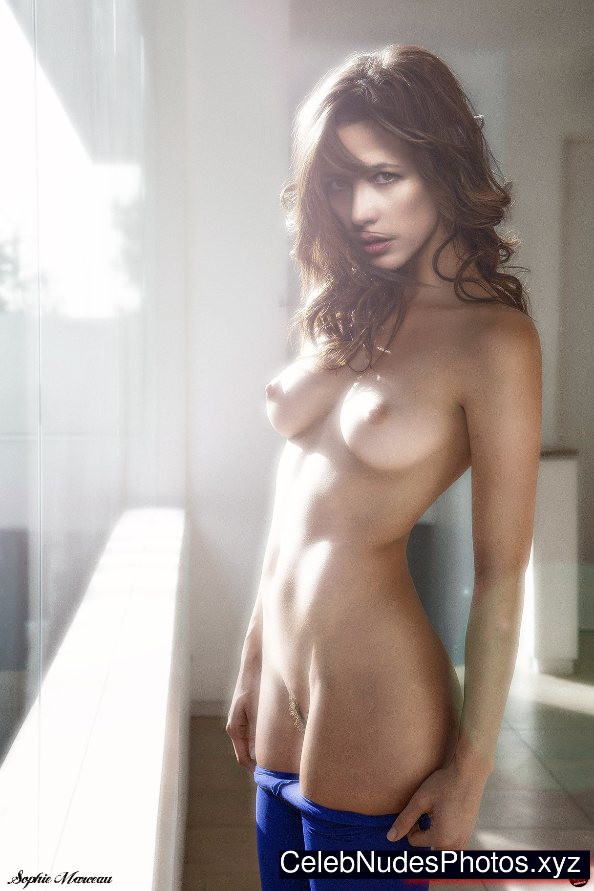 Willa Holland Desnuda Tubezzz Porn Photos